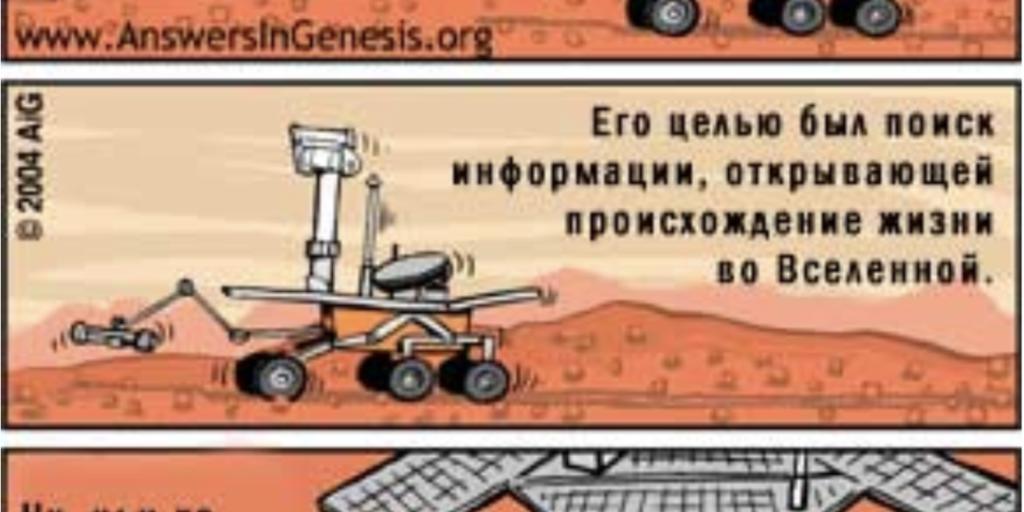 Существует ли жизнь в открытом космосе?
